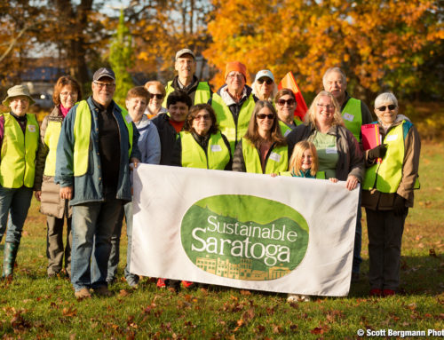 Sustainable Saratoga AND YOU made a difference in 2019